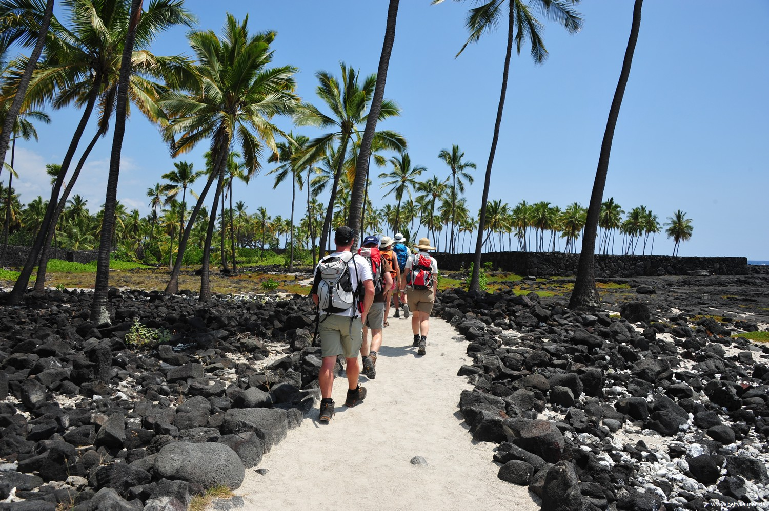 Private Tour Hawaii