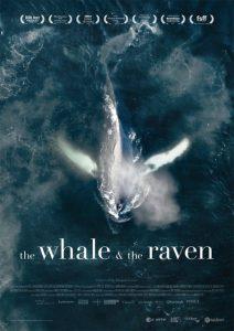 whale_raven